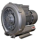 Warmpool Bomba de Aire turbina soplante para Piscina o SPA 0.55kW - 0.75HP Monofasica de Uso Continuo