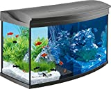 Tetra AquaArt Evolution Line LED Acuario 100 L - Set completo (incluso illuminazione a LED, interruttore luce...