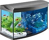 Tetra AquaArt Evolution Line LED Acuario 100 L - Set completo (incluso illuminazione a LED, interruttore luce...