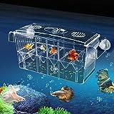 paridera para peces, El acuario de dos capas para criaderos de peces multifuncionales con auto natación, el...