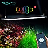 Chihiros WRGB 2 LED Light Full Spectrum App Dimmable RGB Aquatic Plant Light for 90-110CM Tank Built-in...