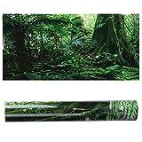 iFCOW Fondo de acuario, caja de reptiles de PVC, fondo de bosque lluvioso, póster de pared para acuario,...