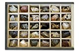 MINERALES Y FOSILES NANO Colección de 30 Rocas Premium en Caja de Madera Natural - Rocas Reales educativas de...