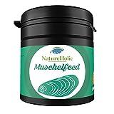 Concha natural eholic Feed caracola Forro–30G–Forro para agua dulce y agua salada conchas en la...