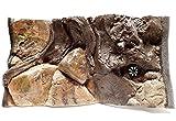 Fondo 3D para acuarios de Aqua Maniac, polirresina (no espuma), 4-12 cm de grosor, decoración exclusiva,...
