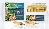 prodibio biodigest vida las bacterias de filtración biológica pescado fresco Marino Arrecife Coral SPS LPS...