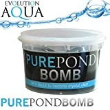 Evolution Aqua Pure Pond, tratamiento para agua de estanque x6