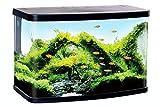Resun Acuario de 30 litros con Cubierta LED y Filtro de Esquina