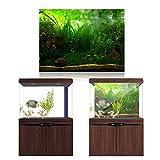 HEEPDD Aquarium Poster, Water Grass Style Fish Tank Fondo Poster Espesar PVC Adhesivo Decoración Etiqueta de...