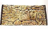 Aqua Maniac - Fondo para acuario 3D, diseño de roca fina, color beige, polirresina (no espuma), 1 a 2 cm de...