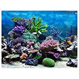 Papel de fondo para acuarios, póster decorativo para acuarios en colores brillantes, PVC impermeable para...
