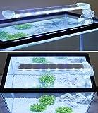 BPS® Lámpara de Acuario LED Iluminación Luces para Plantas Sumergible Luz Blanco y Azul 2 Modelos para...