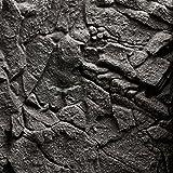 Juwel Fondo de Piedra–Granito
