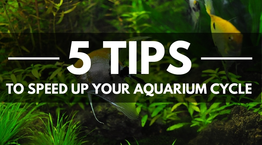 FAST AQUARIUM CYCLE COVER